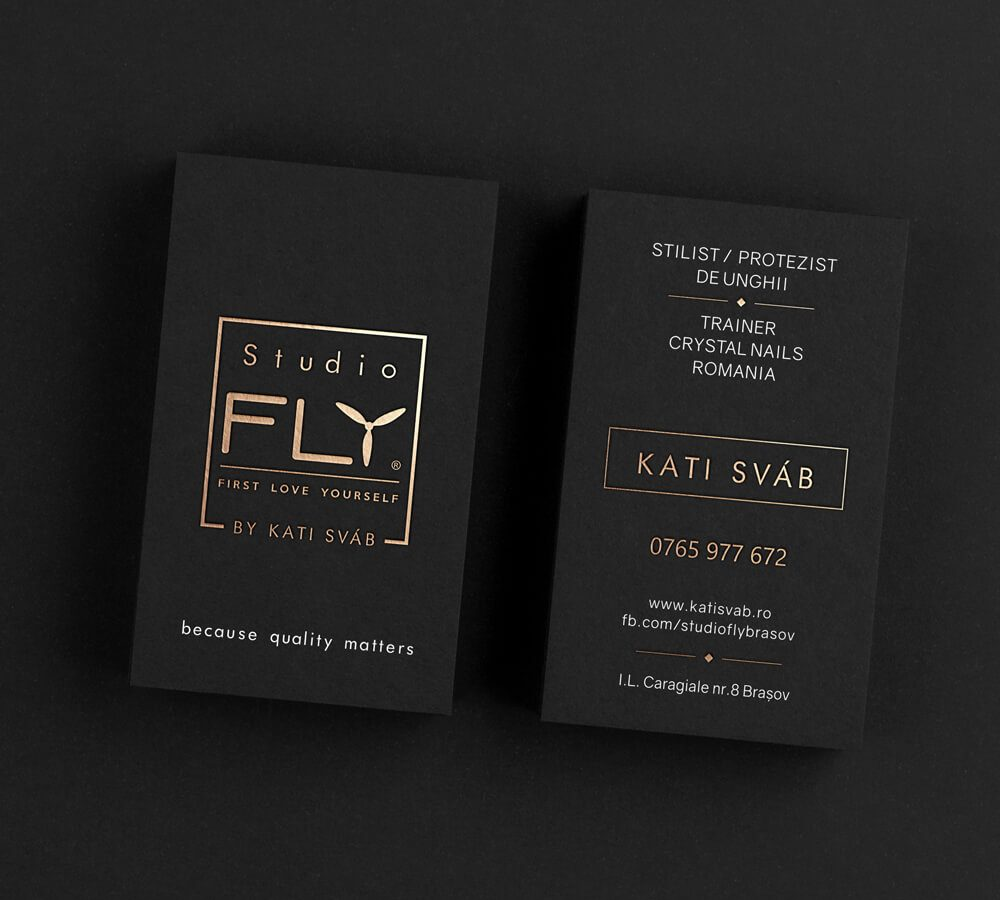 studio fly logo design